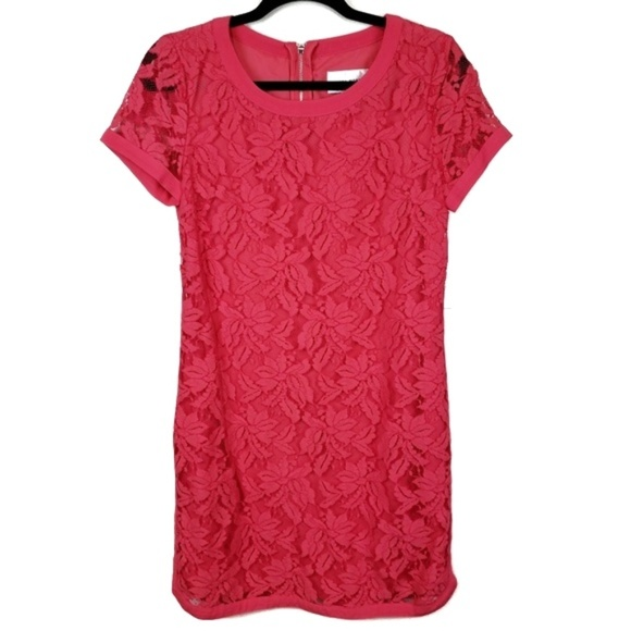 Donna Morgan Dresses & Skirts - Donna Morgan Pink Lace Short Sleeve Shift Dress 8